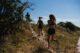 halve trail marathon